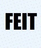 Feit Can Write